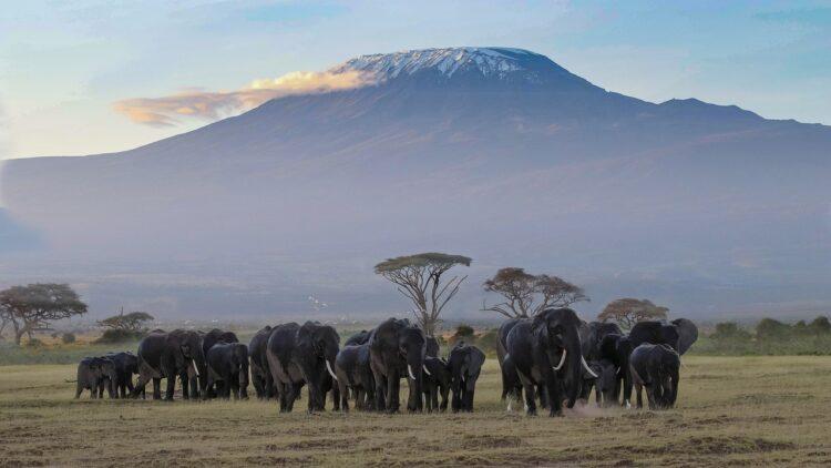 Kenya as a Fantastic holiday destination